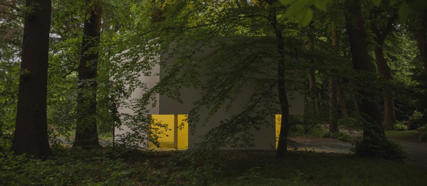 Topwerk van Bruce Nauman (en van Limburgse makelij) in Middelheim Museum onthuld.
