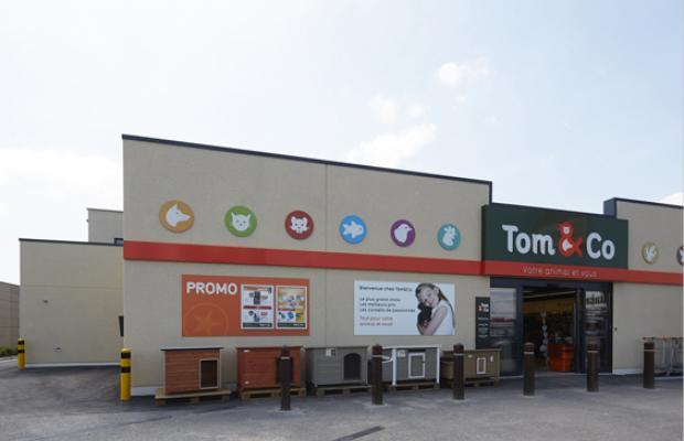 Tom & Co